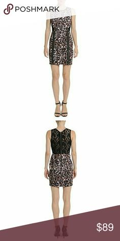"NWT Romeo +Juliet Couture Animal Print Lace Dress New with tags, never used. Two bottom zippers on front, one top zipper on back. Animal print on front and bottom, lace on back. 95% Polyester, 5% Spandex. Back lace 100% Nylon. Dry clean or hand wash. MSRP $140. Discontinued design, hard to find.  Laying flat measurements: Armpit to armpit 16"", 30"" long.  Remember to bundle up and save more, so check my closet for more treasure finds! Romeo & Juliet Couture Dresses Mini"