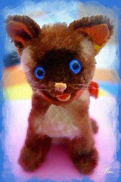 Blue Eyed Kitten