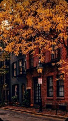 Autumn Aesthetic, Travel Aesthetic, Fall Pictures, Fall Photos, Foto Gif, Fall Background, Autumn Cozy, Autumn Fall, Autumn Paris