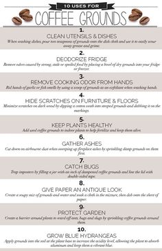 10 Genius Uses for Coffee Grounds   Blog   HGTV Canada