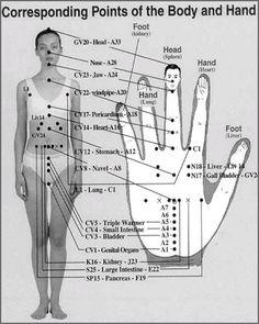. . .FIREBERT: Reflex points, hands, feet and face.