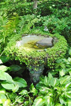 shade garden Another Hamburg Garden Small Gardens, Outdoor Gardens, Water Gardens, Design Jardin, Water Features In The Garden, Woodland Garden, Shade Garden, Garden Pond, Garden Plants