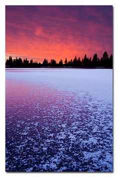 ✯ Frozen Lake Sunset - Turnbull National Wild Refuge - Cheney, Washington