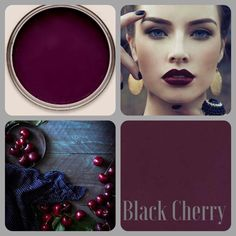 Have you seen the new colors from Wise Owl Chalk Synthesis Paint - Love Love Love this Black Cherry - Pre-orders available at Curiosity Shop, Irving TX. www.curiosityshoptx.com
