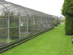 Row of aviaries