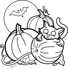 a picture paints a thousand words pumpkin cat and a bat for halloween free coloring page - Halloween Black Cat Coloring Page