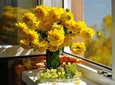 Фотография Golden autumn автор Elena Pankova на 500px