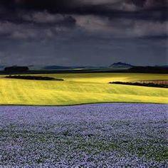 Charlie Waite Landscape Photography - Bing images