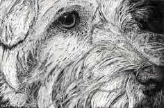 Pet Portraits in stippled ink - Animal Art & Soul