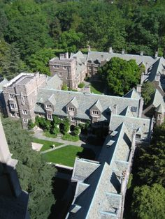 Princeton is my dream school, what should I do?