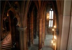 Risultati immagini per gothic library