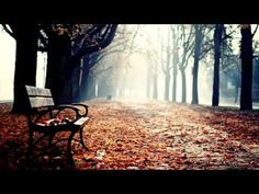 Abraham Hicks ~ When You Know How You Feel, You Start Receiving! - YouTube