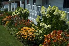 Front Yard With Perennial Plants : Some Good Front Yard Plants