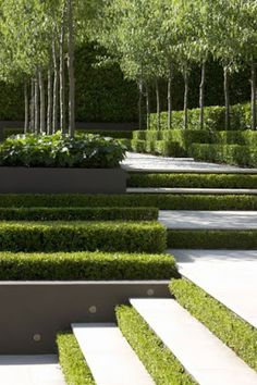HOME DECOR: Wonderful gardening takes plants to new heights