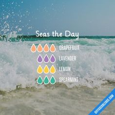 Seas the Day Essential Oil Diffuser Blend