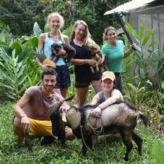 Workaway in Costa Rica. Work on an Animal Rescue & Sanctuary and Organic Vegan Farmstay in central Costa Rica