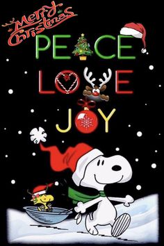 Pet care is both enjoyable business. But it is an effort that requires as much responsibility. We must provide them with everything they need to maintain their lives in a … Christmas Thoughts, Christmas Quotes, Christmas Pictures, Christmas And New Year, Christmas Wishes, Christmas Time, Christmas Cards, Merry Christmas, Christmas Cookies