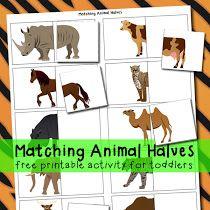 Matching Animal Halves Printable Activity