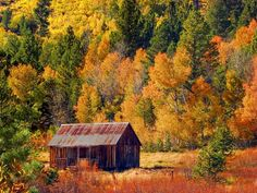 This old rustic barn sits in one of the more beautiful Sierra Nevada valley's known as Hope Valley, California.