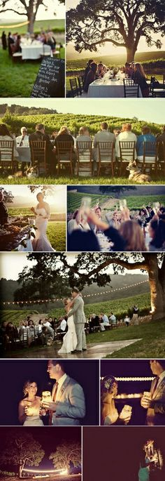 Wedding Party   Outdoor Vineyard Table + Party