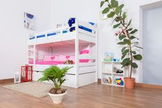 """Bunk bed """"Easy Sleep"""" K3/h incl. trundle bed frame and cover plates, solid beech wood, white painted - 90 x 200 cm"""