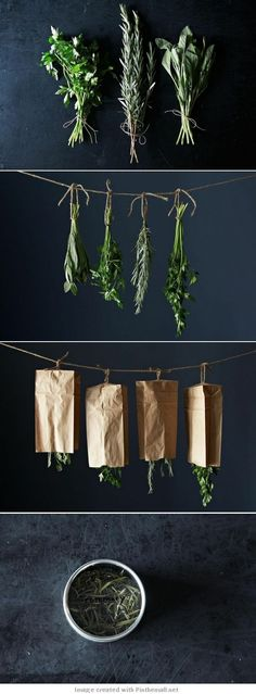 DIY - How to dry your herbs - you need herbs for soups to reduce fat and salt. Summer is coming and buy fresh herbs at your local Farmer's Markets. Growing Herbs, Plantation, Kraut, Hydroponics, Hydroponic Gardening, Fresh Herbs, Herbal Remedies, Natural Remedies, Gardening Tips