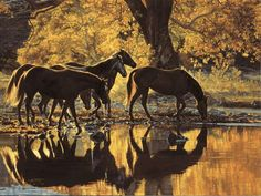 The horses he paints look so realistic Tim Cox