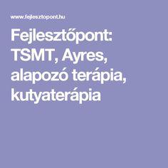Fejlesztőpont: TSMT, Ayres, alapozó terápia, kutyaterápia Budapest, School