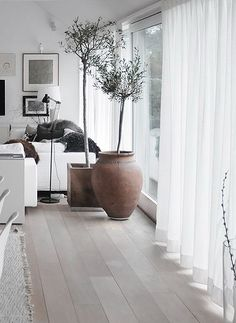 I love the simplicity of these wood floors.  So chic and polished.  I love the white wash look.  Gentle and serene.