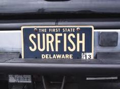 1000 images about fishy license plates on pinterest for North carolina surf fishing license