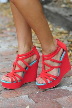Colored wedges.