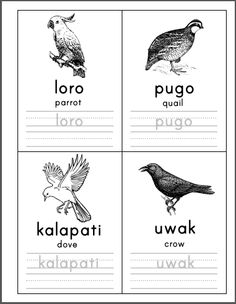 Preschool Worksheets Archives - Page 3 of 18 - Samut-samot 1st Grade Worksheets, Preschool Worksheets, Tagalog Words, Alphabet Pictures, Kids Learning Activities, Activity Sheets, Filipino, Homeschool, Flashcard