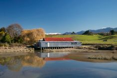 Old Apple Shed on Motueka Estuary, Tasman Region, New Zealand. Nelson New Zealand, Royalty Free Images, Scenery, Shed, Apple, Stock Photos, Heart, Pictures, Photography