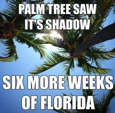 We don't need #PunxsutawneyPhil, #BillMurray, we're always on repeat for great weather! Join us, call me today to get started with a mortgage pre-approval! 386-338-7912! #GroundhogDay #joinus #lovefl #mortgage #loans #realty #floridaliving #floridsrealestate #househunting #homebuyers #seeyouatthebeach