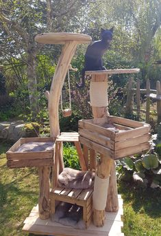other trees sold - natural wooden trees for cats - scratching post - . other trees sold – natural wooden trees for cats – scratching post – # trees Outdoor Cat Enclosure, Diy Cat Tree, Cat Trees, Cat House Diy, Cat Playground, Cat Scratching Post, Wooden Tree, Cat Room, Outdoor Cats