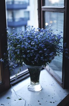 Beautiful flowers #DreamingInBlue