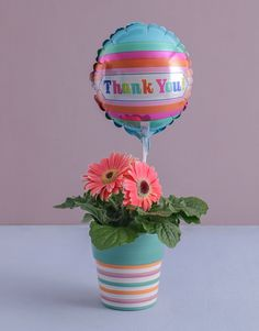 Thank You Gerbera Plant Pink Happy Birthday, Happy Birthday Candles, Happy Birthday Balloons, Gerbera Plant, Pink Gerbera, 21 Balloons, Elizabeth Arden Red Door, Star Candle, Lucky To Have You