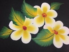 One Stroke Painting- Plumeria and leaves