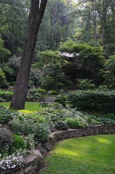 Simple sloped garden in the woods. Love the stone wall.