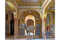 The Rout of Rathore, Moti Mahal, Jaiselmer. (The tiles!)