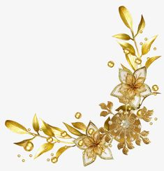 Transparent Background PNG Image Gold Page Dividers - Yahoo Search Results Image Search Results Flower Border Png, Floral Border, Love Wallpapers Romantic, Aqua Wallpaper, Boarder Designs, Golden Flower, Borders And Frames, Wedding Frames, Gold Christmas