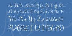 Janda Stylish Script Font · 1001 Fonts