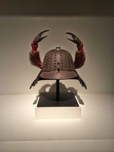 Animal Helmet | cabinet of curiosities | cabinet de curiosites | Luca Cableri