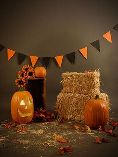 Brown Halloween Photography Backdrops Pumpkin Photo for Shooting - Halloween Backdrop - Halloween Tanz, Halloween Infantil, Halloween Bebes, Soirée Halloween, Halloween Pictures, Halloween Birthday, Vintage Halloween, Halloween Costumes, Halloween Photography Backdrop