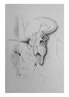 Longhorn Skull sketch