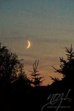 Glücksmomente: Mondscheinsonaten