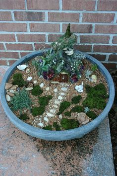 Reminder not to let the fairy garden get overgrown this year. year. Use weed mat and aquarium gravel.