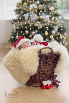 Christmas Newborn Photography next to the Christmas Tree. Babies 1st Christmas. Little santa in a basket by www.emiliareillyphotography.co.uk