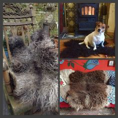 all handfelted fleeces by me leather free Shag Rug, Rugs, Leather, Free, Home Decor, Shaggy Rug, Farmhouse Rugs, Decoration Home, Room Decor
