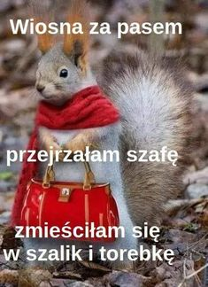 Śmieszne Weekend Humor, Smile Everyday, Cute Animal Photos, Man Humor, Funny Cute, Wisdom Quotes, Nostalgia, Cute Animals, Jokes
